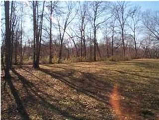 156 Tree Frog Lane, Lot #14 -2