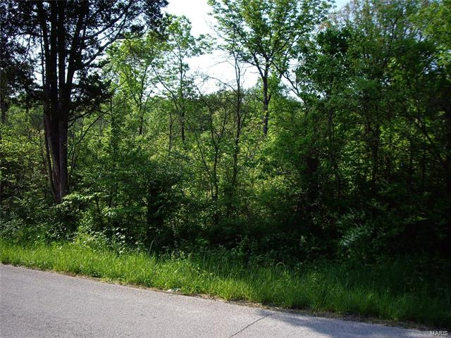 0 9.04 Acres - Dittmer  Road -1