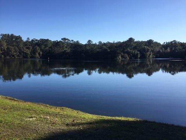 Lot 23 Guale Point SE -23