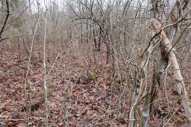 0 9.04 Acres - Dittmer  Road -15